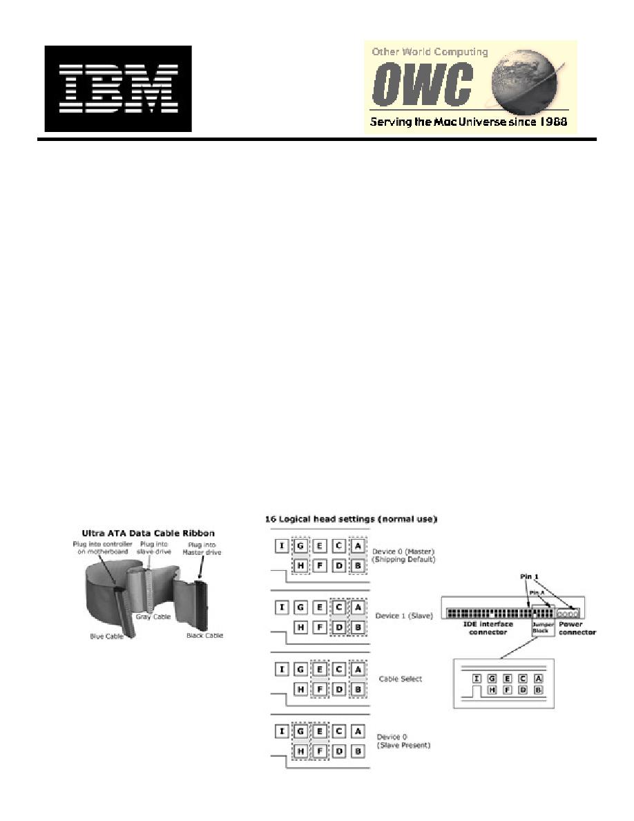 Basic jumper settings for ibm deskStar ata hard Drives