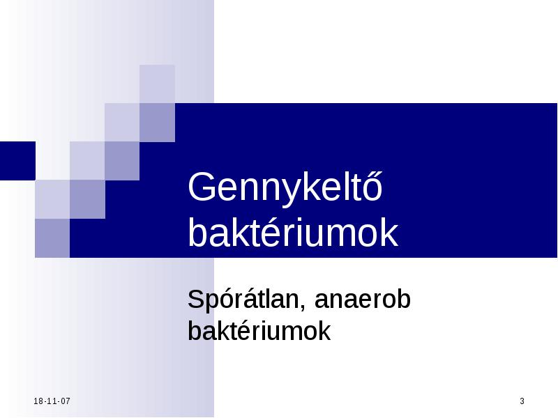 helmintológiai tanfolyam