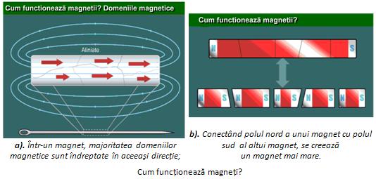magneții pierde în greutate eco subțire org