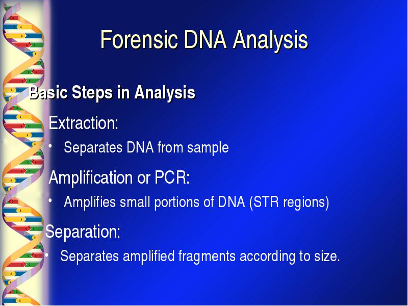 what is dna forensic Forensic dna provides the professional and legal community with educational and expert resources in the field of forensic science.